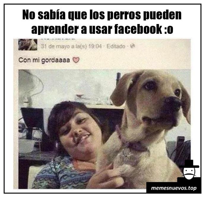 Imagenes graciosas @ memesnuevos.top
