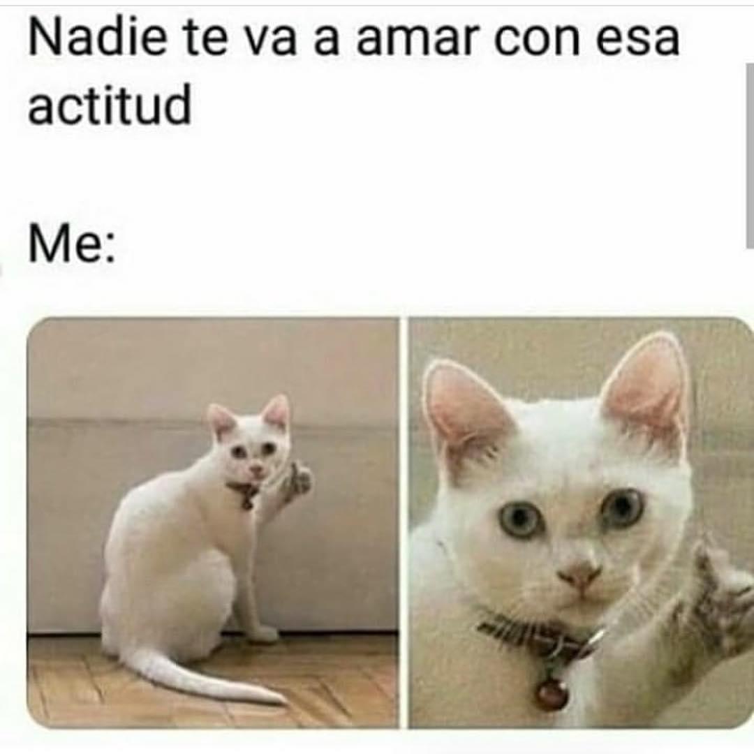 Nadie Te Va A Amar Con Esa Actitud Memes 2019