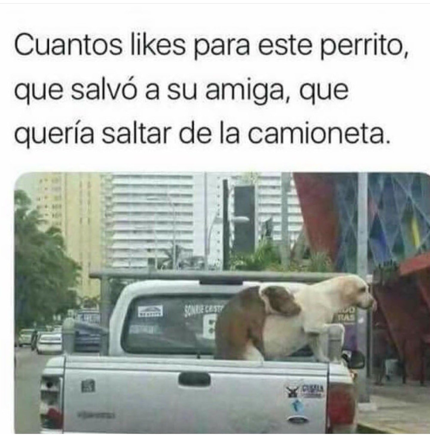 Ultimos memes 2019 en español @ memesnuevos.top